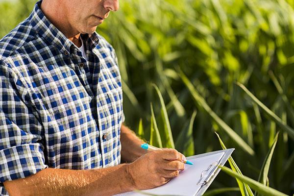asesoria proyectos agricolas